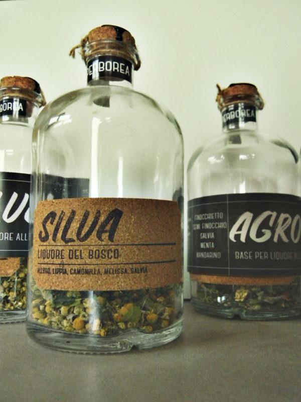 Silva - liquore del bosco